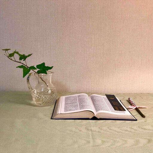 TOP bible_class_s